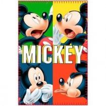 Manta polar Mickey