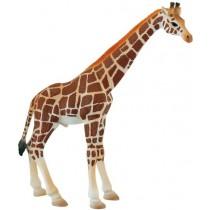 Deco Bolo Girafa pescoço...