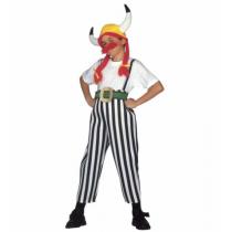 Disfarce Carnaval Obelix...