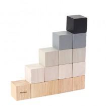 Cubos Plan Toys 5374