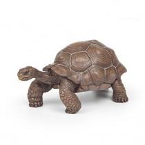 Papo Tartaruga das Galápagos